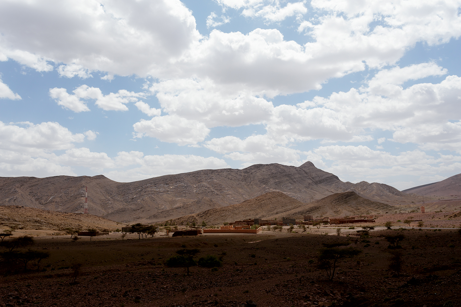 Morocco desert, near Agdz. Sparse vegetation, but interesting terrain.